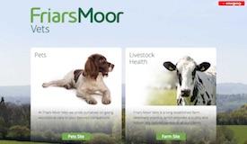 Friars Moor Vets website - Home